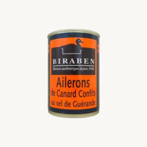 Biraben_ailerons_canard
